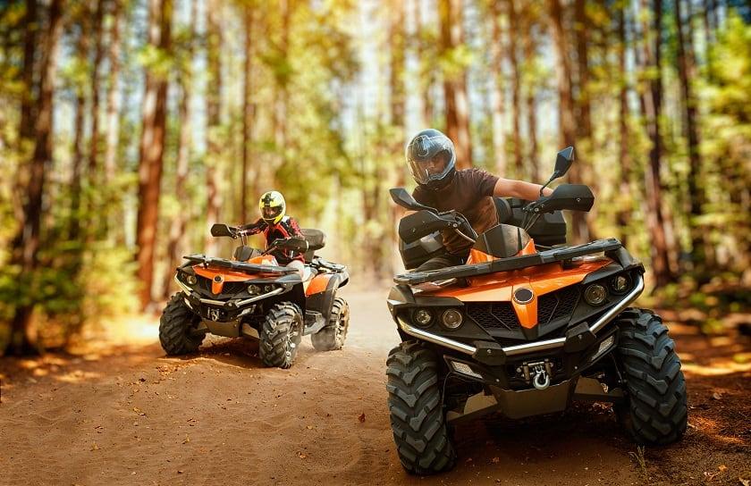 ATVs in woods