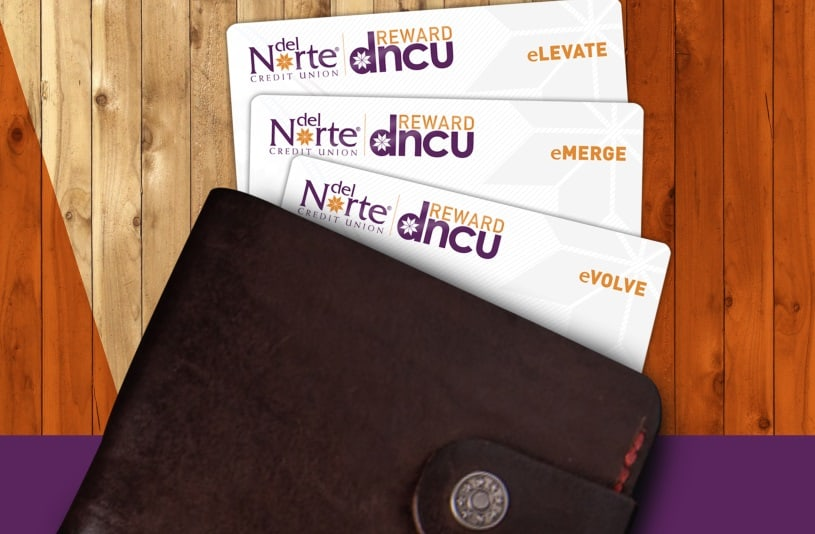 Wallet With Three DNCU cards